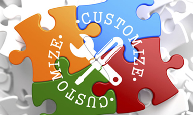 ERP Customisation and Personalisation
